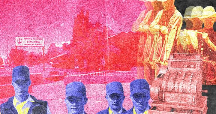 La cultura del mangazo en los menonitas