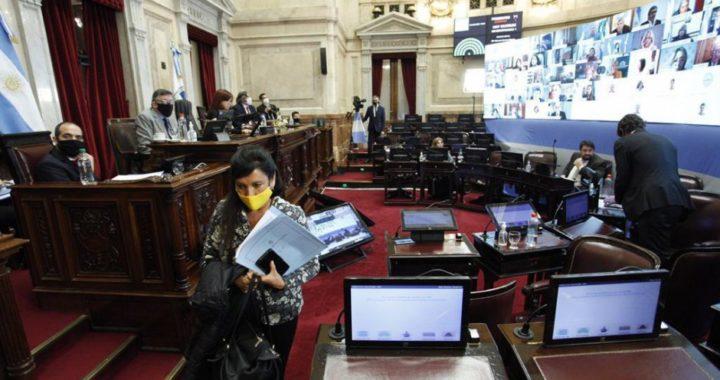 Se impuso la iniciativa del kirchnerismo: El Senado aprobó la ley para investigar a Vicentin