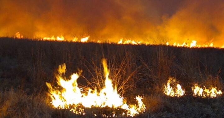 Defensa Civil y Bomberos contuvieron incendios en La Adela y Algarrobo del Águila