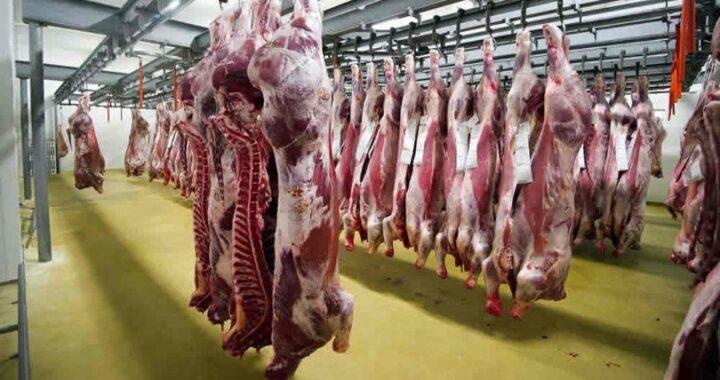 Comienza a regir los precios rebajados a la carne en todo el país