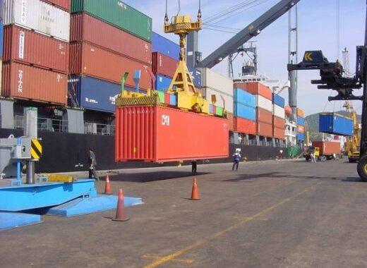 La Pampa exportó más de 5 mil toneladas de granos con certificación fitosanitaria electrónica